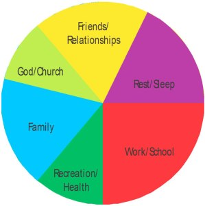 Life-Pie-chart
